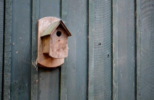 Izdelava ptičje hišice v 3 korakih